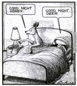 'Good night honey.' 'Good night deer.'