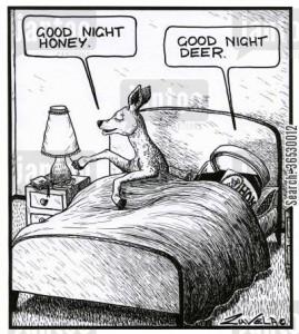 'Good night honey.' 'Good night deer.'